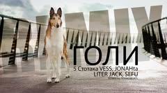 5 Stotaka - Goli ft. Vess Jonahta Liter Jack Sefu - ГОЛИ